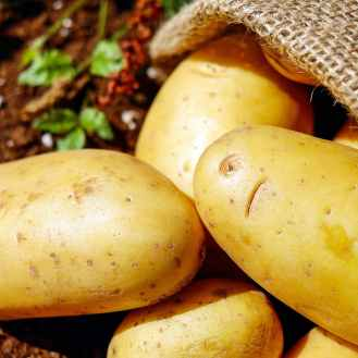 potatoes-vegetables-erdfrucht-bio-162673.jpeg